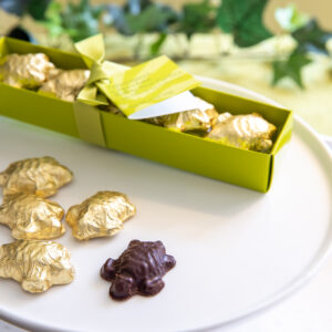 Baby Sea Turtle Chocolate